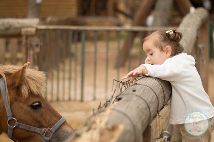 Granja con animales, vacaciones con niños