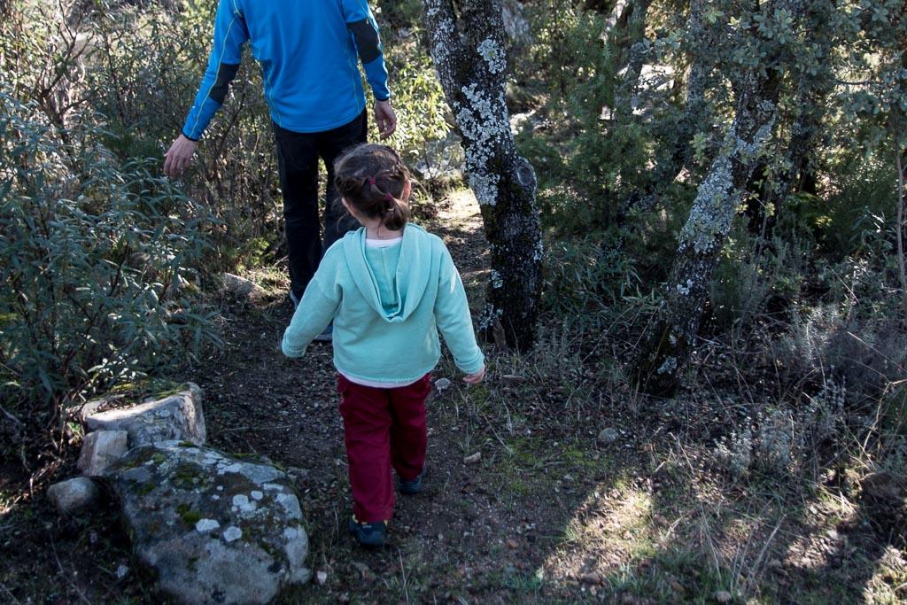 Planes con niños en la naturaleza