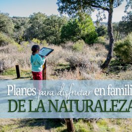Rural It, disfrutar de la naturaliza en familia