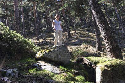 Una excursión por Navacerrada: Camino Schmid
